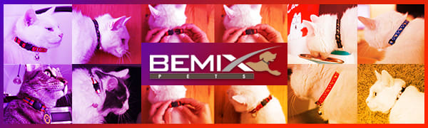 cat collar bemix pets