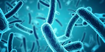 depression streptococcus thermophilus allergien bifido complete detox candida complex
