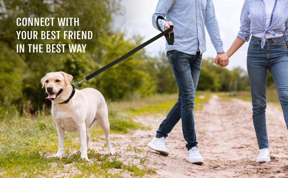 puppy leash