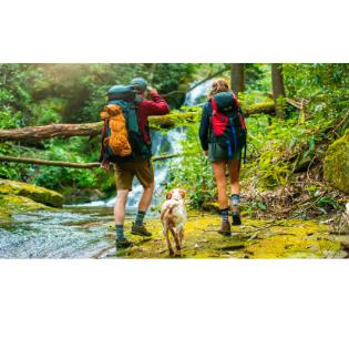 XL FITS Medium Hiker Red Crew: Essential Hiking Socks