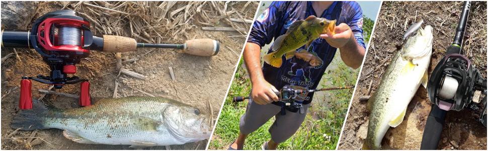 fishing reel spinning