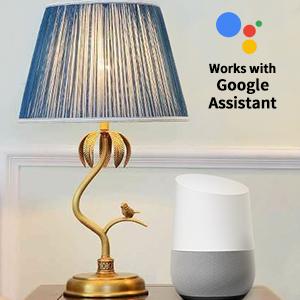 Connectez-vous avec Google Home