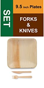"9.5"" Square Plates Knives Forks"