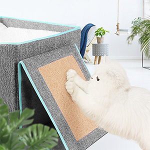 Durable Scratching Board & Exquisite Cat Bed
