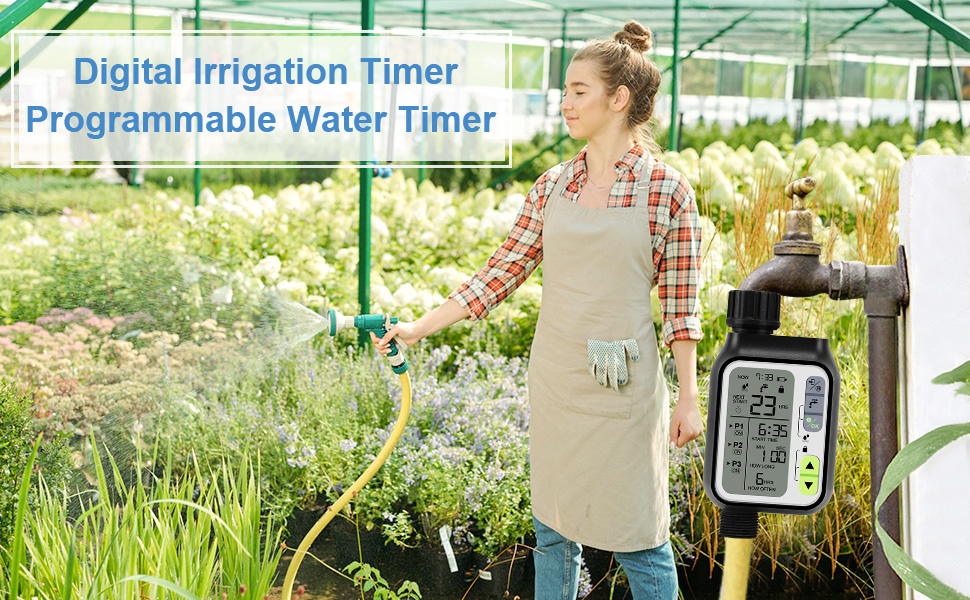 programmable water timer