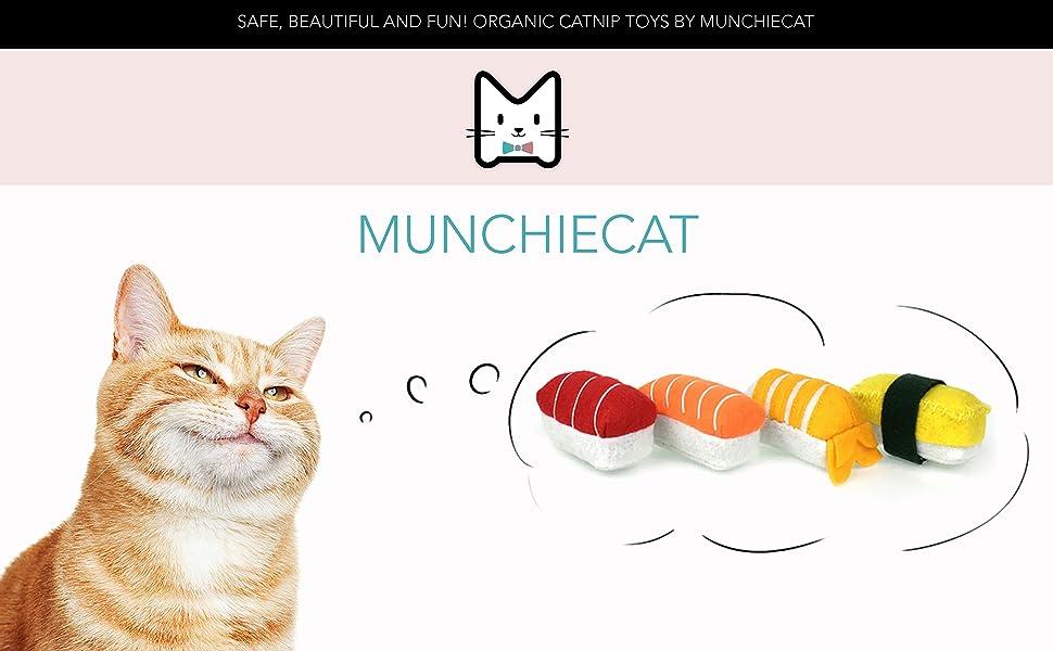 Munchiecat Story Header