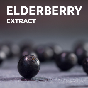 Elderberry Extract for Immune System
