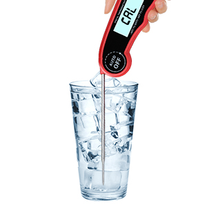 meat thermometer quick read