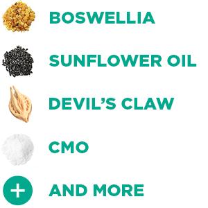 boswellia, sunflower oil, devil's claw root, cmo