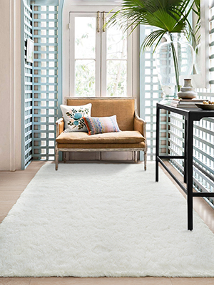fuzzy rug for living room