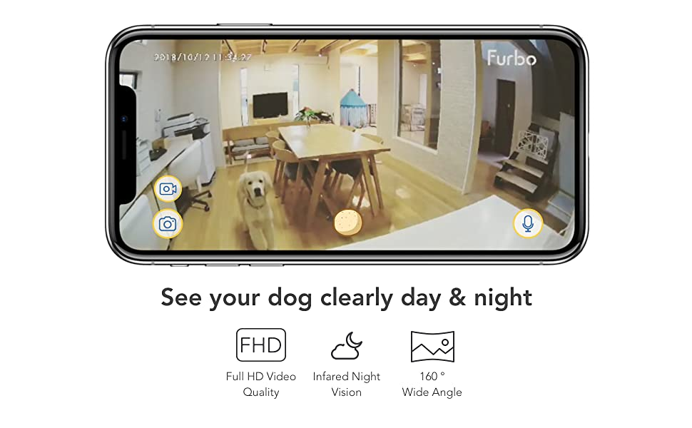 See your dog clearly day & night