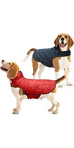 Comfort fit dog harness