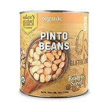 organic pinto beans bulk