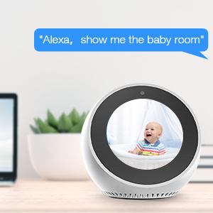 Camera works with Alexa