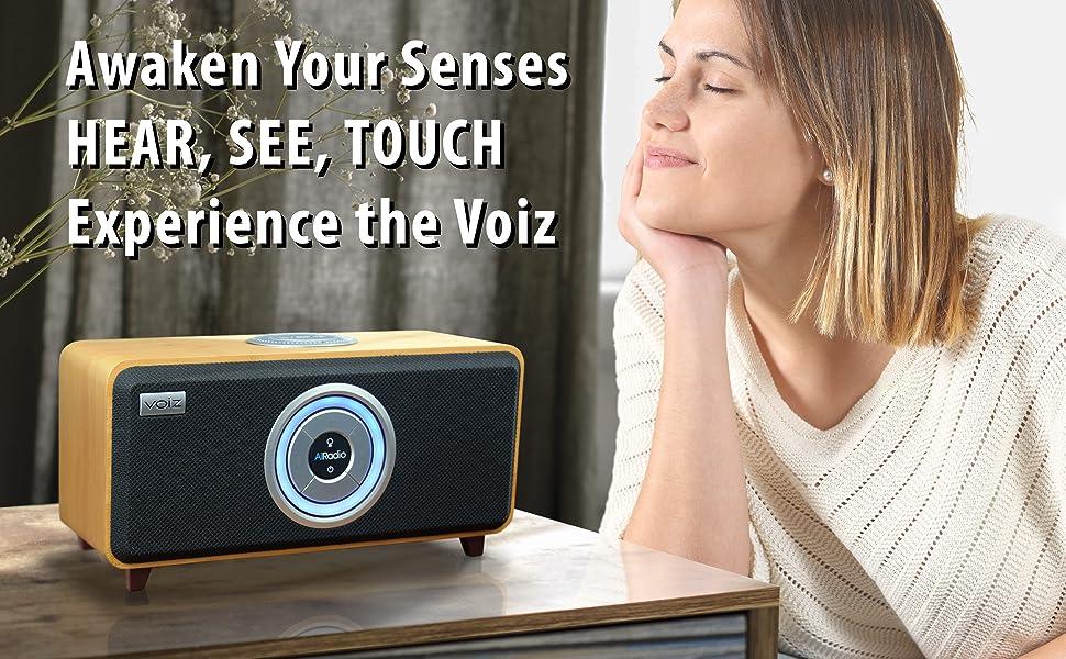 Awaken Your Senses Voiz AiRadio Duo Pure Sound Wireless Speaker Streaming Handcrafted Bamboo Cabinet
