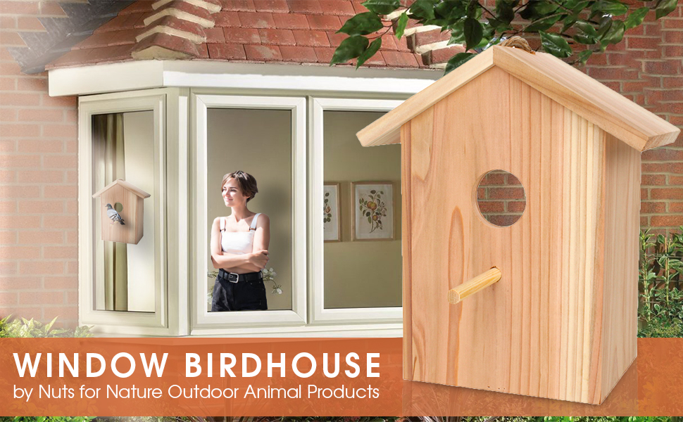Window Birdhouse
