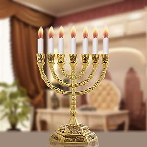 Hanukkah Menorah 1003