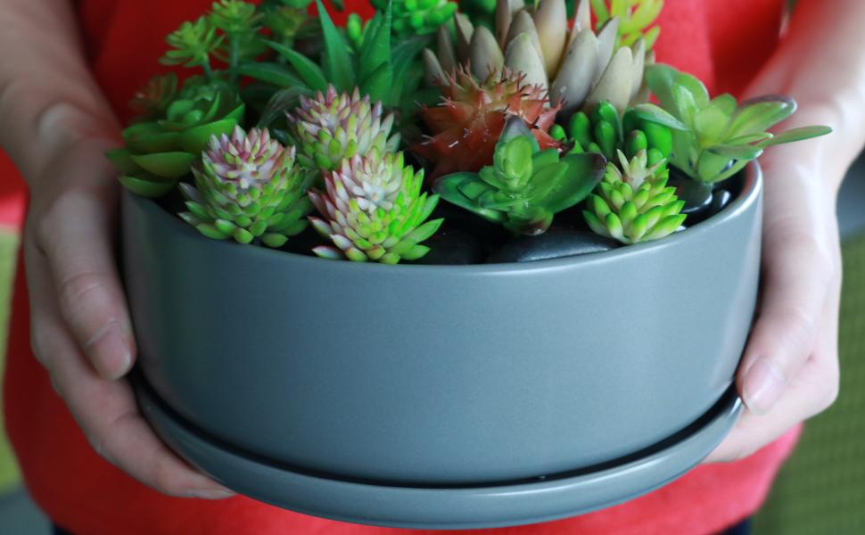 EPGardening succulent planter