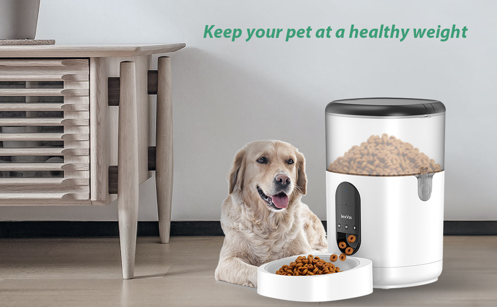 automatic pet feeders for cats