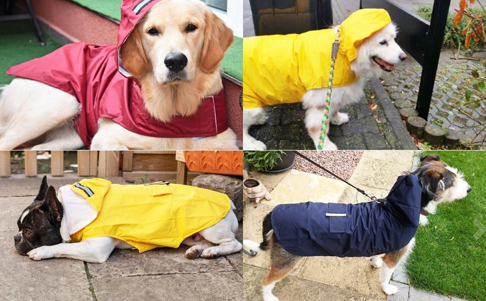 Dog Raincoat for Medium Dogs
