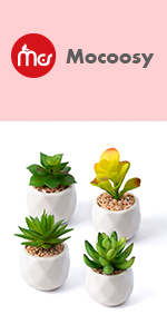 Artificial Succulent Plants