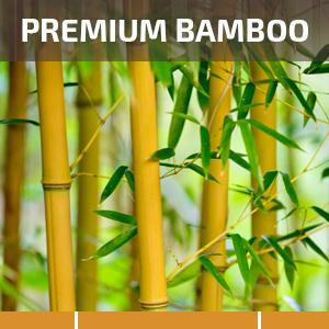 natural bamboo wood