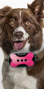 bark collar, anti barking device, dog bark collar