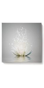 Art Lotus Flower