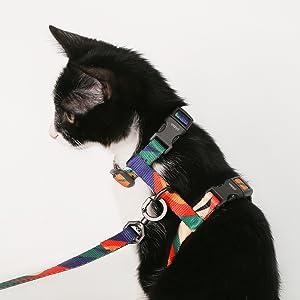 pidan Cat Harness and Leash Set Escape Proof Adjustable Cat Walking Jackets Cat Vest with Metal