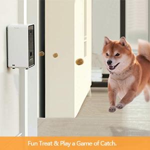 treat dispenser for dog cat