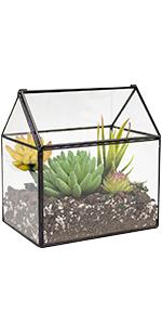 house glass terrarium