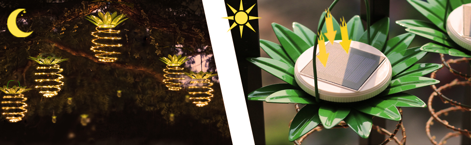 Solar decor lights