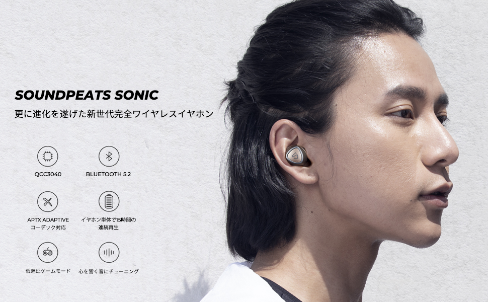Sonic banner