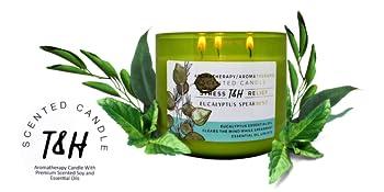 T&H Eucalyptus Spearmint Candle