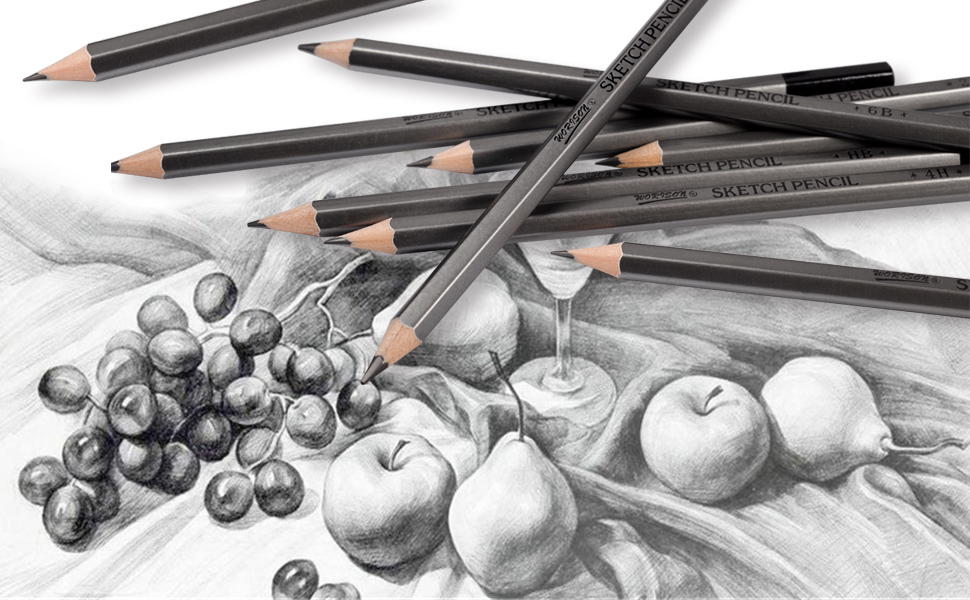 Amazon Com Professional Drawing Sketching Pencil Set 12 Pieces Drawing Pencils 10b 8b 6b 5b 4b 3b 2b B Hb 2h 4h 6h Graphite Pencils For Beginners Pro Artists