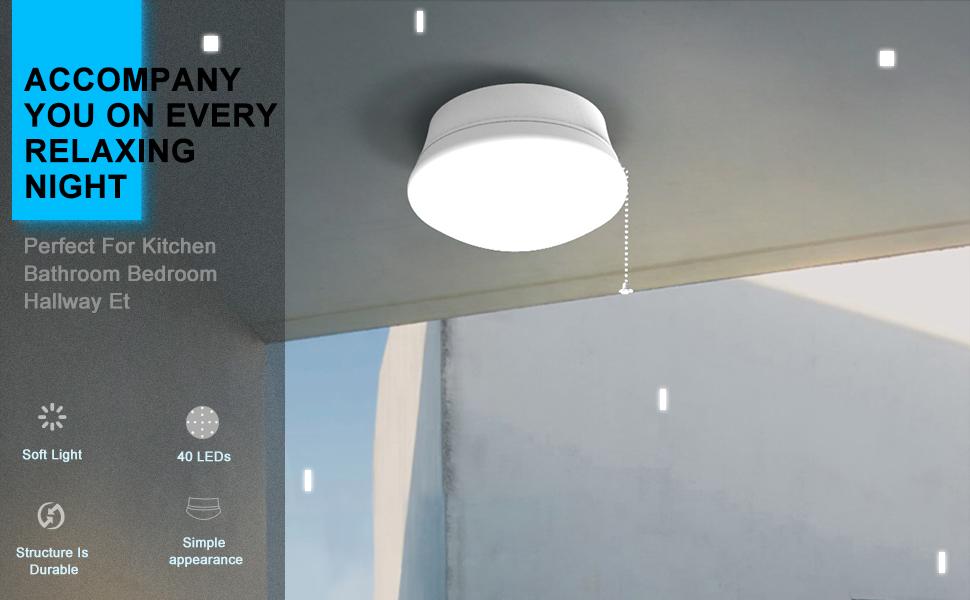 LED Flush Mounted Ceiling Light