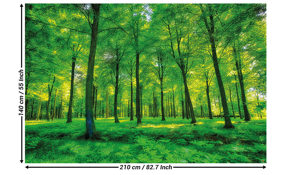 Mural Summer Trees Wall Picture Decoration Nature Pure Landscape Forest Glade Relaxation Sun Plants Flora Ferns Wallpaper Photoposter Decor 82 7