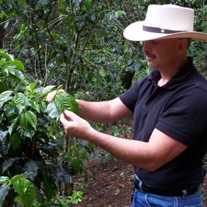don pablo picking coffee beans