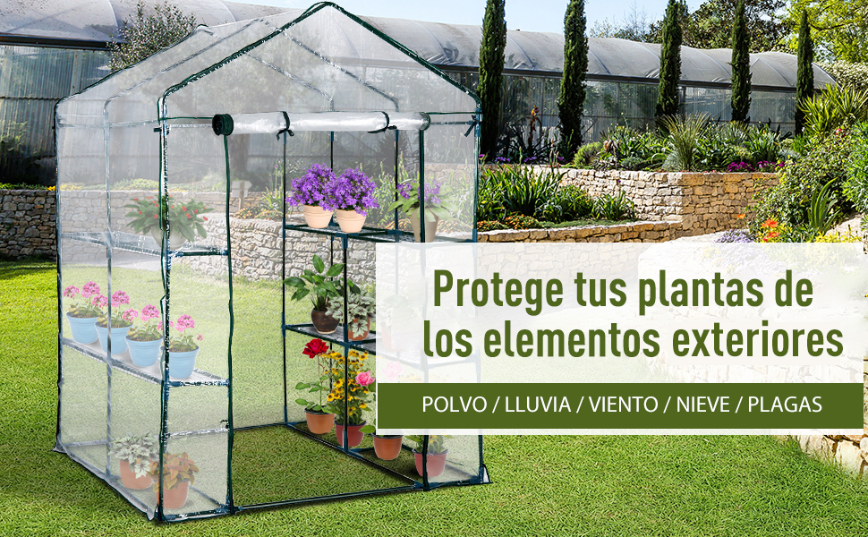 Outsunny Invernadero Transparente de Jardín Vivero Casero Plantas con 3 Pisos 143x143x195cm Marco Acero Jardinería Invernadero: Amazon.es: Jardín