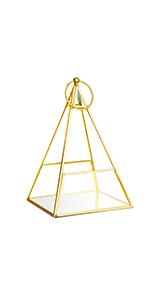 Golden Pyramid TERRARIUM