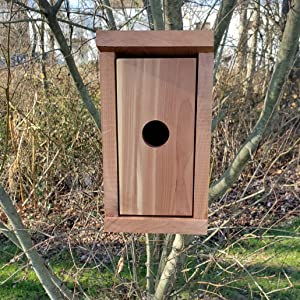 Hanging Cedar Bird Box front face outside open