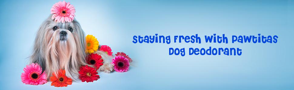 Dog Deodorant Pawfume