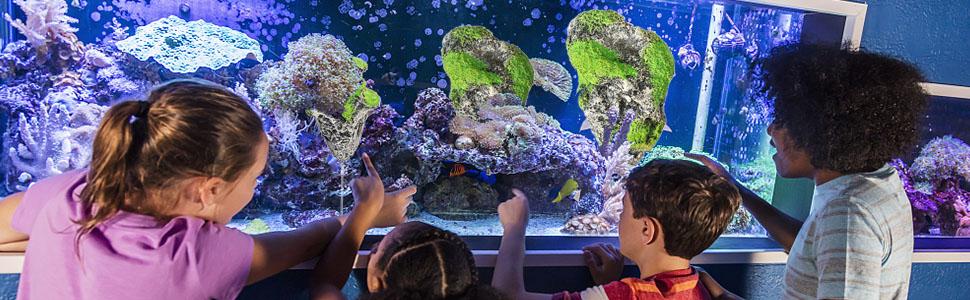 Floating Artificial Stone Rock for Aquarium Decoration Fish Tank Ornament