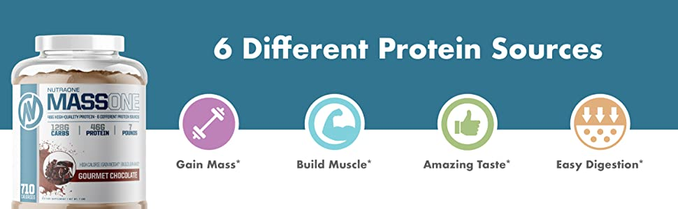 6 Different Protein Sources Gain Mass Build Muscle Amazing Taste Easy Difestion