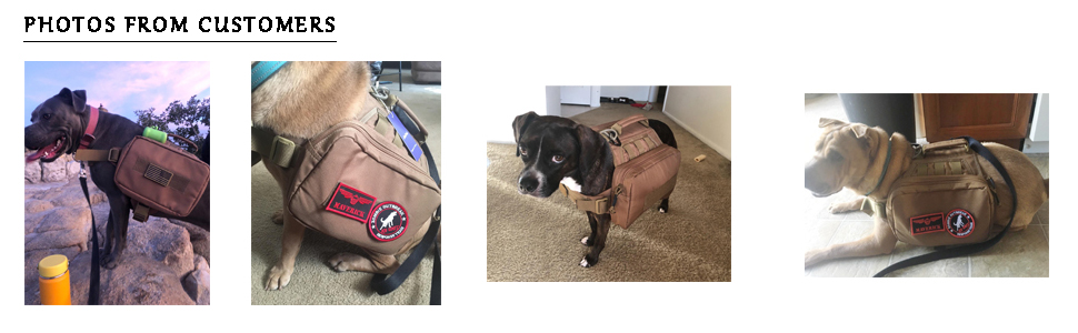 Camping Dog Vest