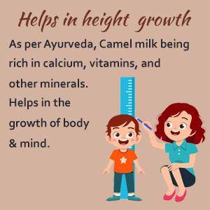 Camel Milk Camel Milk Powder