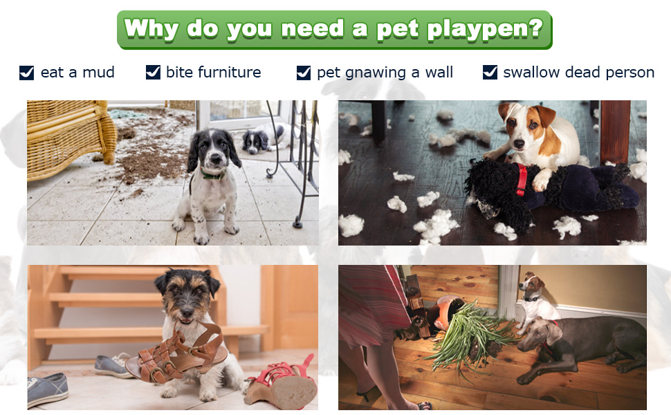 Dog_crate_dog_kennel_dog_cage_14