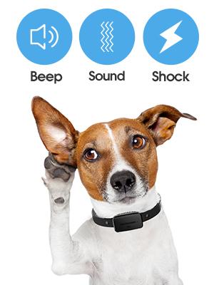barking collar