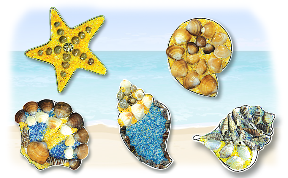39544 - Shell Fridge Magnets