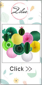 Cactus party supplies